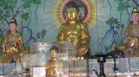 圖片3-碧岸寺釋迦牟尼佛底圖
