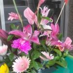碧岸寺供花